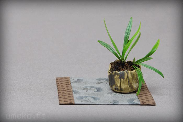 Céramiques pour Shitakuza