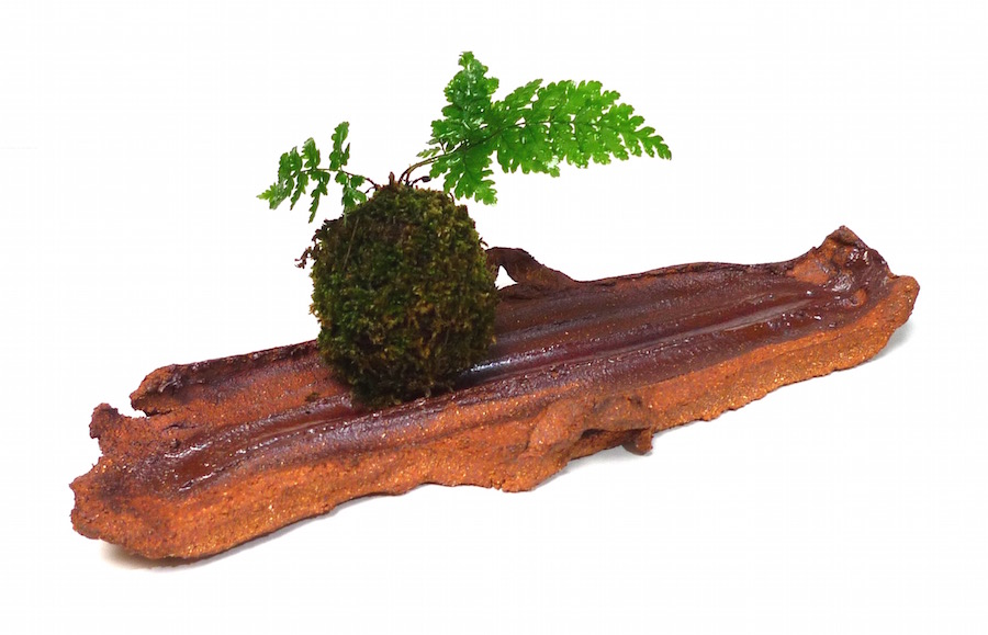 Supports pour Kokedama